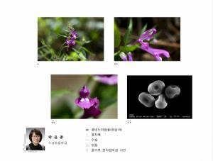 충북, 교사와 학생이 함께한 전자현미경 사진전 열려